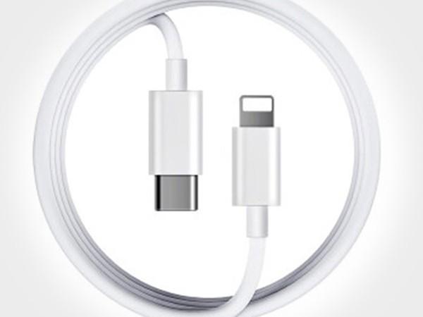 苹果闪充PD数据线定制
